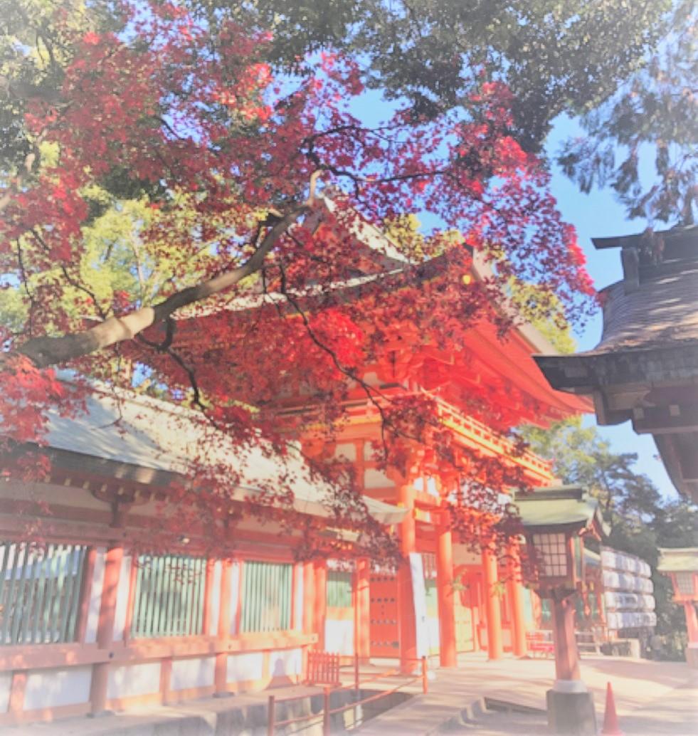 龍神が棲む?大宮の最強パワースポット武蔵一宮氷川神社で御朱印をGET